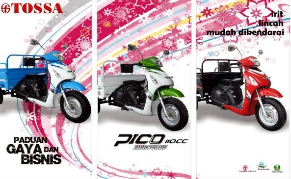 3 pico1
